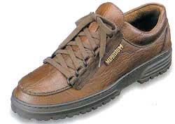 メフィストの靴